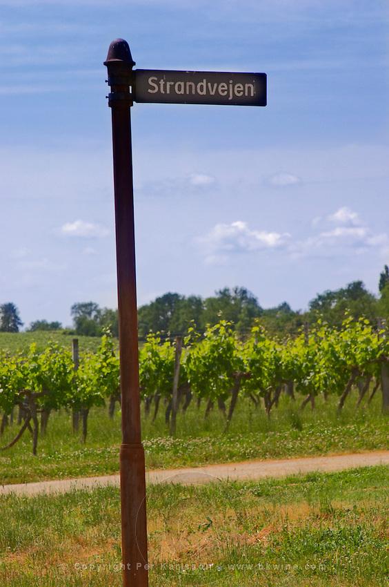 The vineyard and a jocular Danish road sign saying Strandvejen Chateau de Haux Premieres Cotes de Bordeaux Entre-deux-Mers Bordeaux Gironde Aquitaine France