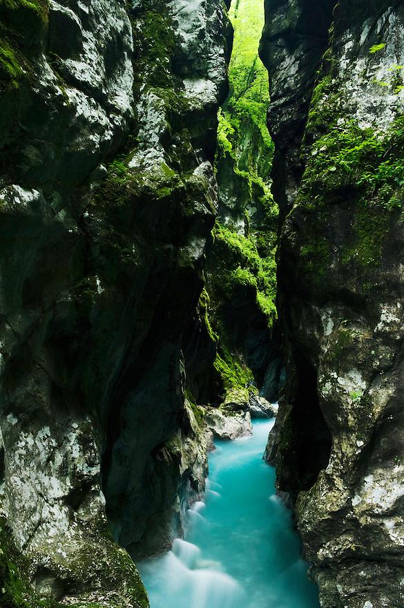 Tolminka canyon (Tolminska korita), river Tolminka<br /> Triglav National Park, Slovenia<br /> June 2009