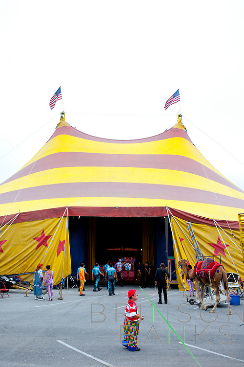 "The Cole Bros. Circus is everything you would imagine from a circus decades ago. This nostalgia keeps audiences returning to the one tent in mall parking lots and on fairgrounds up and down the east coast. ""Back in the depression, while everybody was on food lines and there was no money, the circus was the greatest entertainment. It was the escape. We have seen that again with the recession. The big top is magical, if you've never been to a circus under the tent, there's something thrilling and chilling about it,"" said Ringmaster Chris Connors...2009 marks the Cole Bros.'s 125th anniversary and the circus claims to be the oldest American circus under a tent. The 136 x 231 foot tent can house over 2,800 fans, along with several acts where the performers hail from all over the world...These images are from shows in Augusta, Georgia, Thomasville, Georgia and Meridian, Mississippi."