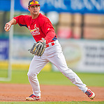 2 March 2013: St. Louis Cardinals second baseman Greg Garcia warms up prior to a Spring Training game against the Washington Nationals at Roger Dean Stadium in Jupiter, Florida. The Nationals defeated the Cardinals 6-2 in their first meeting since the NLDS series in October of 2012. Mandatory Credit: Ed Wolfstein Photo *** RAW (NEF) Image File Available ***