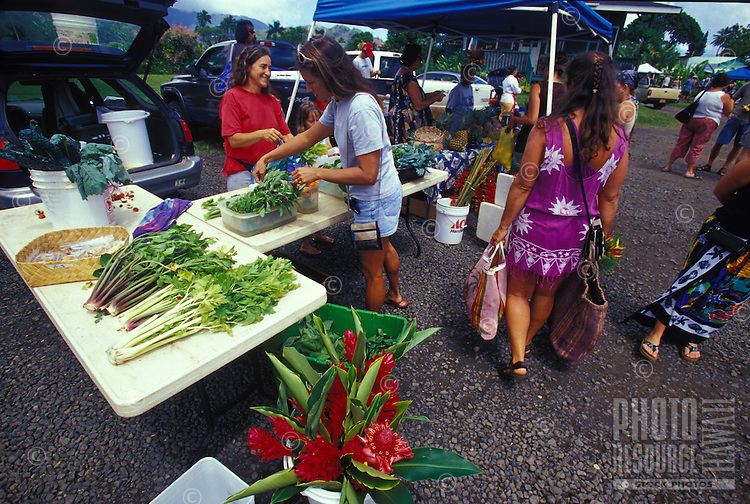 Farmers community market scene in Hanalei Town, woman selecting vegetables, red ginger flowers Hanalei, Kauai
