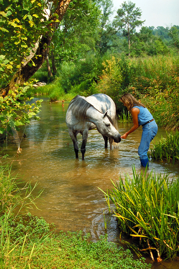 Arabian Mare and woman in green glade with stream. Friendship trust harmony. horse, horses, animals, pets.  Aalusive Bey. Alabama, Resting S Ranch.