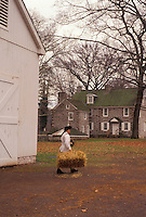 AJ3279, Washington Crossing, Pennsylvania, Interpreter at Washington Crossing Historic Park carries a bale of straw out of the barn in the state of Pennsylvania.