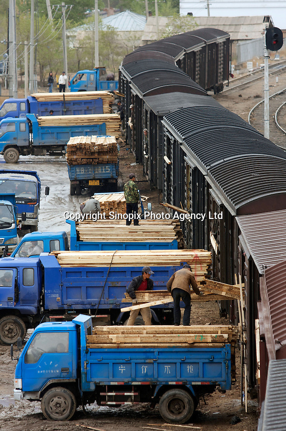 Workers upload processed wood materials onto a train heading for the Russian territories, in the Manzhouli railway station, Inner Mongolia, China. China is increasingly importing more and more of the world's natural resources as it continues to grow at an astranomical pace..29 May 2008