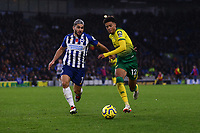 Neal Maupay of Brighton & Hove Albion and Jamal Lewis of Norwich City during Brighton & Hove Albion vs Norwich City, Premier League Football at the American Express Community Stadium on 2nd November 2019