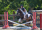 Los Altos Hills Horseman's Association Summer Schooling Show at the Town Arena, July 26, 2015
