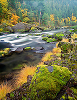 Fall colors along North Fork Umpqua River. Oregon.