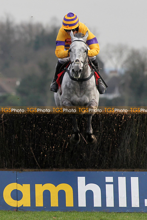 Domtaline ridden by R Walsh in jumping action in the Kempton.co.uk Graduation Chase - Horse Racing at Kempton Park Racecourse - 08/02/13 - MANDATORY CREDIT: Gavin Ellis/TGSPHOTO - Self billing applies where appropriate - 0845 094 6026 - contact@tgsphoto.co.uk - NO UNPAID USE.