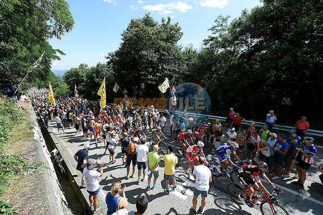 Action from the Italian National Championships 2017 Elite Men road race running 236km from Asti to Ivrea, Piemonte, Italy. 25/06/2017.<br /> Picture: Foto LaPresse/Fabio Ferrari | Cyclefile<br /> <br /> <br /> All photos usage must carry mandatory copyright credit (&copy; Cyclefile | LaPresse/Fabio Ferrari)