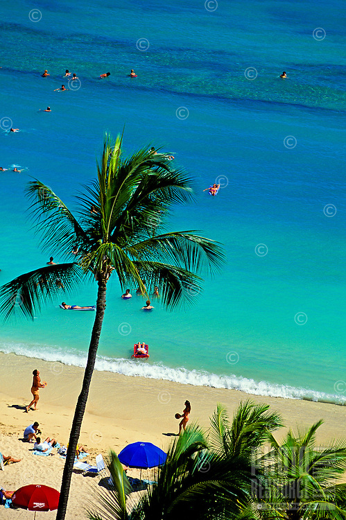 People engaged in various activities at world famous Waikiki beach, from swimming and lazing on air mattresses to playing ball and tanning on the beach. A tall palm waves in the foreground.