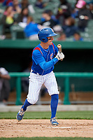 South Bend Cubs third baseman Zack Short (3) squares around to bunt during a game against the Kane County Cougars on May 3, 2017 at Four Winds Field in South Bend, Indiana.  South Bend defeated Kane County 6-2.  (Mike Janes/Four Seam Images)
