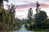 West Coast scenic road near Lake Ianthe  at sunset, West Coast, South Westland, New Zealand