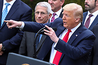 United States President Donald J. Trump makes remarks declaring a national emergency due to the COVID-19 coronavirus pandemic in the Rose Garden of the White House on March 13, 2020 in Washington, DC. At left is Director of the National Institute of Allergy and Infectious Diseases at the National Institutes of Health Dr. Anthony Fauci.<br /> Credit: Oliver Contreras / Pool via CNP/AdMedia