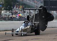 Aug 16, 2014; Brainerd, MN, USA; NHRA top alcohol dragster driver Gord Gingles during qualifying for the Lucas Oil Nationals at Brainerd International Raceway. Mandatory Credit: Mark J. Rebilas-