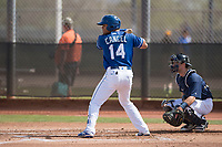 Kansas City Royals second baseman Gabriel Cancel (14) during a Minor League Spring Training game against the Milwaukee Brewers at Maryvale Baseball Park on March 25, 2018 in Phoenix, Arizona. (Zachary Lucy/Four Seam Images)