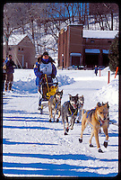 A MUSHER AND TEAM FINISH THE U.P. 200 SLED DOG RACE IN MARQUETTE MICHIGAN.