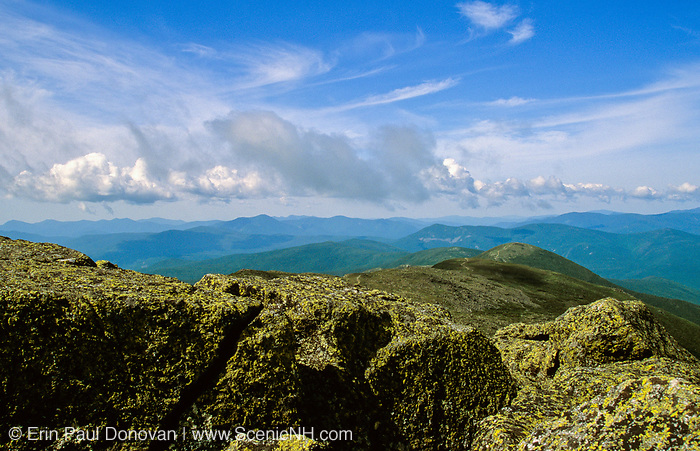 Appalachian Trail - Looking towards Mount Eisenhower in the Presidential Range, near Mount Monroe, in the White Mountains, New Hampshire.
