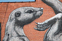 ROA<br /> Belgium artist Roa is known for painting monochrome animals, typically painting rodents native to the area he is painting. Roa leaves Fort Smith with &ldquo;The Mole&rdquo; and &ldquo;The Otter&rdquo;in his trademark black and white style.