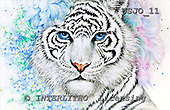Marie, REALISTIC ANIMALS, REALISTISCHE TIERE, ANIMALES REALISTICOS, paintings+++++BengalFantasy2,USJO11,#A# ,Joan Marie tiger