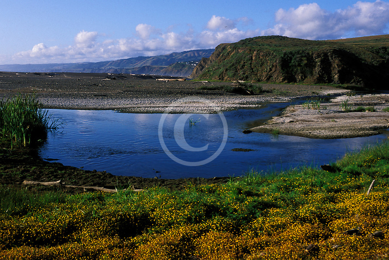 California, Point Arena, Alder Creek, Manchester State Park