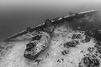 Wreck of a PBY Catalina Flying Boat, scuttled by US forces at Biak, West Papua, Indonesia, Pacific Ocean