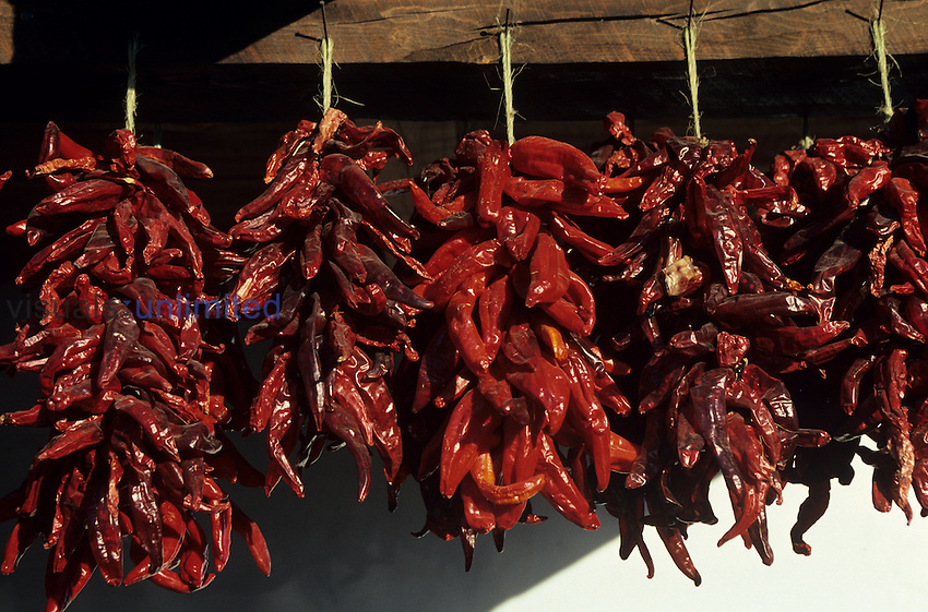 New Mexican Chilli Peppers