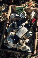"""Europe/France/Limousin/19/Corrèze/Branceilles: Les vendanges """"Mille et une Pierres"""" vin de pays de Branceilles - Bouteille de vin rouge dans un panier de vendange avec grappe de raisin"""