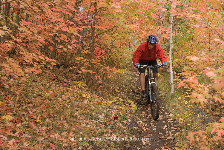 Mountain biker Quinn Depperschmidt rides a single track through a patch of mountain maples in the Big Hole Mountains in southeast Idaho.