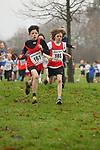 2013-12-15 Holly Run 11 SB u11B