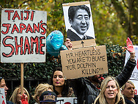 07.11.2014 - Anti-Taiji Protest at Japanese Embassy in London