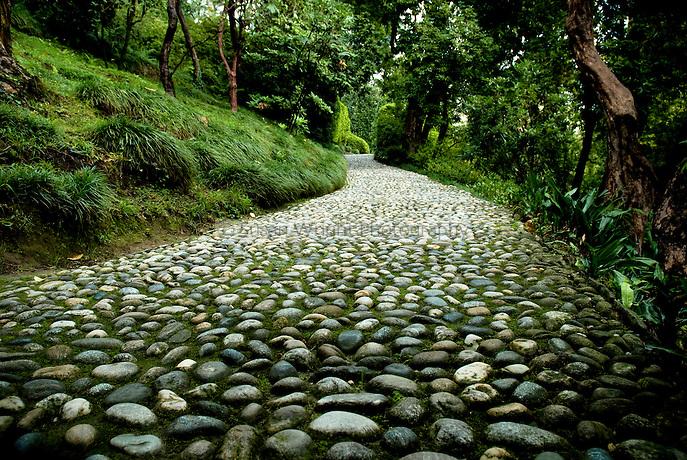 Stone pathway, Villa Carlotta, Lake Como, Italy