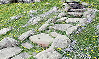 Stock photo of rustic and simple stone staircase on a slope surrounded by wildflowers bluets and common hawkweed in the foothills of clingmans dome in the great smoky mountains national park, Tennessee, America.