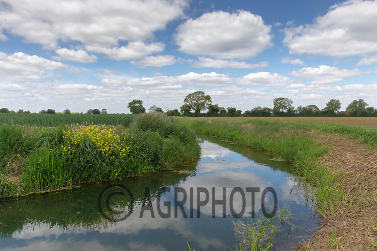 15.5.2020 Watercourse running through the Lincolnshire Fens <br /> ©Tim Scrivener Photographer 07850 303986<br />      ....Covering Agriculture In The UK....