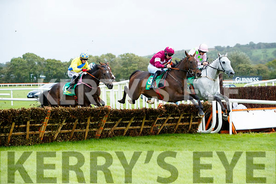 Action from Listowel Races on Sunday last.