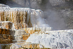 Mammoth Hot Springs is a popular tourist spot in Yellowstone.