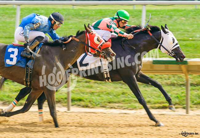 Cause You Can winning at Delaware Park on 9/21/16