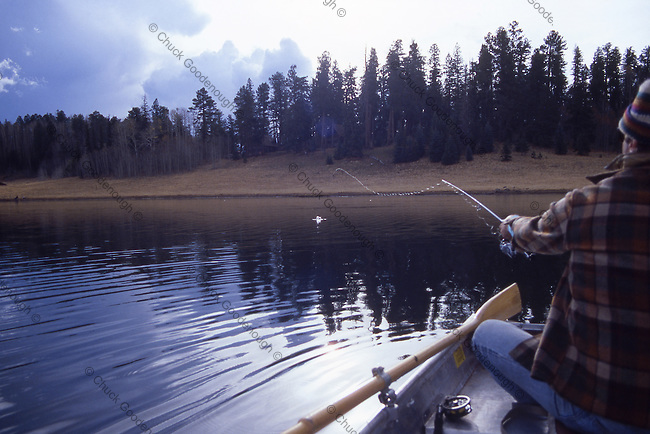 Photo taken in the White Moutains in Arizona of a Fisheman on a Lake in a Rowboat making a nice Long Cast.