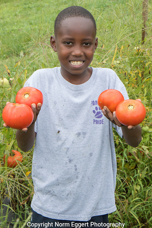 Children volunteered to work on a non-profit farm that provides food to the Worcester Food Bank