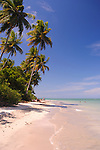 Beach on the island of Boipeba, just south of Salvador, Brazil.