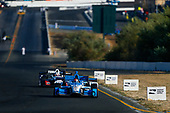 Verizon IndyCar Series<br /> GoPro Grand Prix of Sonoma<br /> Sonoma Raceway, Sonoma, CA USA<br /> Sunday 17 September 2017<br /> Marco Andretti, Andretti Autosport with Yarrow Honda<br /> World Copyright: Jake Galstad<br /> LAT Images