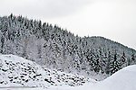 Snowy Willamette National Forest in the Cascade mountain range in Oregon
