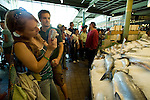 Morgan Martin takes a photo of a fish display at Pike Place Fish Company in Seattle. She and Blake Pollard (R) joined in on the 100th Anniversary celebration of Pike Place Market. For a century, the Pike Place Market, has become a city institution and a national attraction, bringing in over a million tourists a year. .Jim Bryant Photo. ©2010. ALL RIGHTS RESERVED.