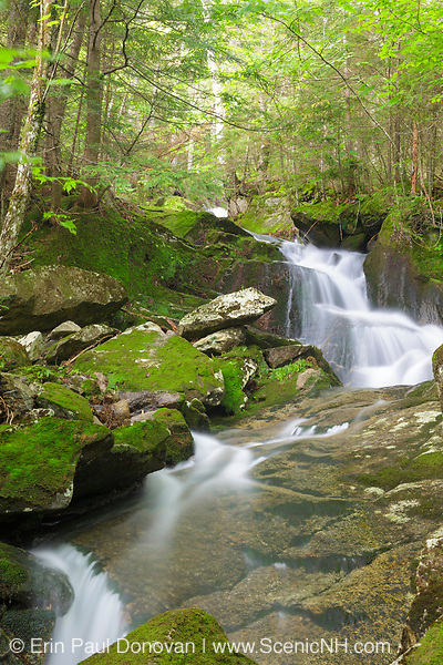 Cascade on a tributary of Lost River on Mount Jim in Kinsman Notch of Woodstock, New Hampshire USA during the summer months.