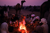 Camel Mela.this is the camel Mela at the end of a pilgrimage to the tomb of a saint who could heal camels.  Mela's and pilgrimages were times of truce....a safe time to transport your goods.....travelling with thousands is safer than being alone.  Camels came in at the end of the ancient harappan period (around 2000BC)..4,800 years ago, at the same time as the early civilizations of Mesopotamia and Egypt, great cities arose along the flood plains of the Indus and Saraswati (Ghaggar-Hakra) rivers.  Developments at Harappa have pushed the dates back 200 years for this civilization, proving once and for all, that this civilization was not just an offshoot of Mesopotamia..They were a highly organized and very successful civilization.  They built some of the world's first planned cities, created one of the world's first written languages and thrived in an area twice as large as Egypt or Mesopotamia for 900 years (1500 settlements spread over 280,000 square miles on the subcontinent)..There are three major communities--Harappa, Mohenjo Daro, and Dholavira. The town of Harappa flourished during this period because of it's location at the convergence of several trade routes that spanned a 1040 KM swath from the northern mountains to the coast.