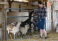 NWA Democrat-Gazette/DAVID GOTTSCHALK  Sagely Burnett, 19, checks on the goats Thursday, March 14, 2018, on the Burnett family farm, D4S Farms, in Winslow. The Burnett family tends poultry, cattle, hogs, ducks and the goats on the 500 acre farm.