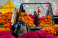 Mexican market vendors unload piles of of marigold flowers (Flor de muertos) for Day of the Dead festivities in Mexico City, Mexico, 31 October 2016. Marigold flowers (Cempasúchil) are used to adorn graves and altars during the Day of the Dead (Día de Muertos). A syncretic religious holiday, combining the death veneration rituals of the ancient Aztec culture with the Catholic practice, is celebrated throughout all Mexico. Based on the belief that the souls of the departed may come back to this world on that day, people gather at the gravesites in cemeteries, praying, drinking and playing music, to joyfully remember friends or family members who have died and to support their souls on the spiritual journey.