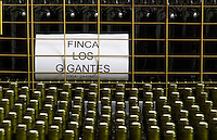 Bottles standing in plastic crates and wire cages, Finca los Gigantes Bodega Del Anelo Winery, also called Finca Roja, Anelo Region, Neuquen, Patagonia, Argentina, South America