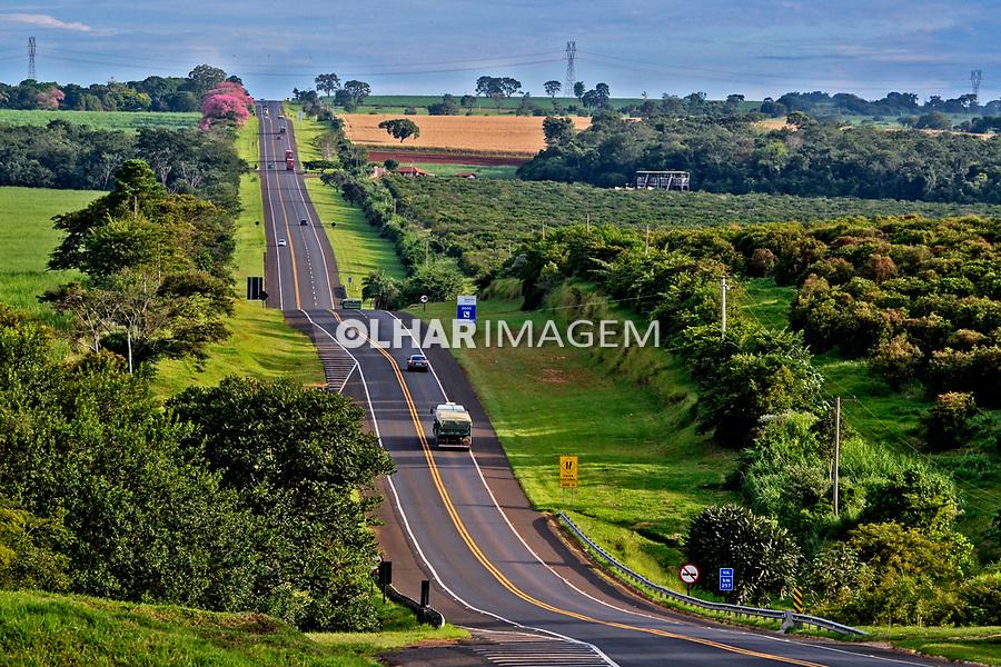 Rodovia estadual. Estrada SP318. Sao Carlos. Sao Paulo. 2012. Foto de Juca Martins.