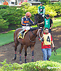 Never Gone South before The Strike Your Colors Stakes at Delaware Park on 8/5/15