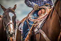 Rockyford Rodeo 2019
